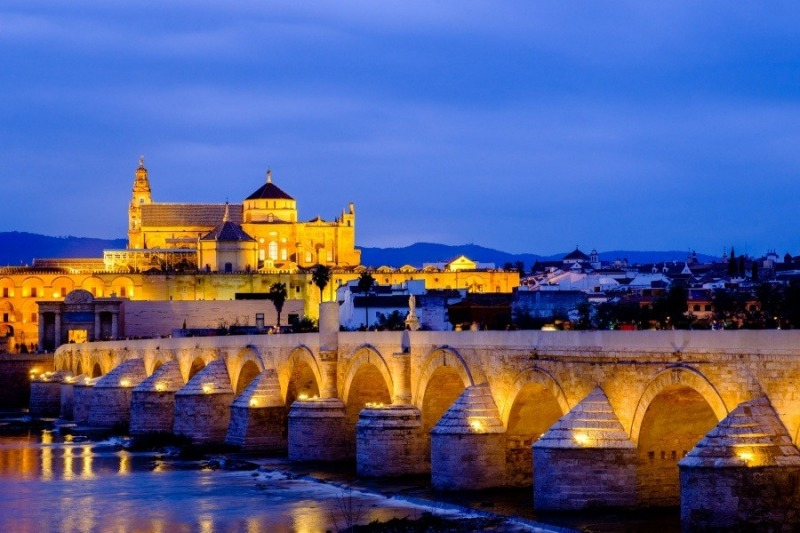 The Roman Bridge and Cathedral, Cordoba